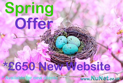 £650 New website Spring special offer